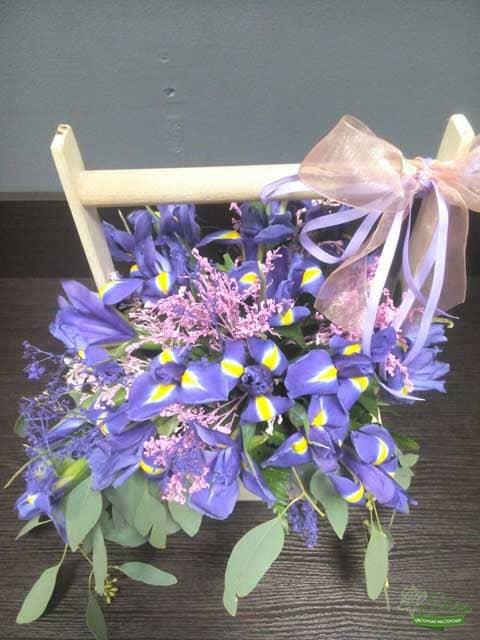 Ирисы фото цветов