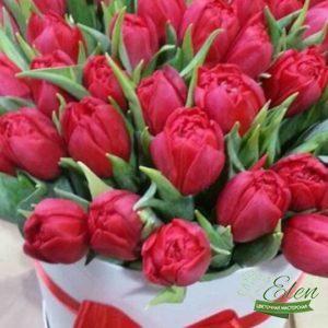Шляпная коробка 25 красных тюльпанов будет хорошим вариантом для похода в гости к друзьям.