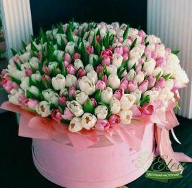 Тюльпаны в коробке с доставкой по Киеву