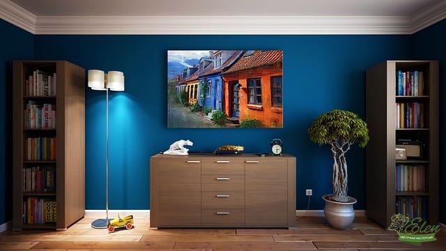 Озеленение квартиры, дома, офиса