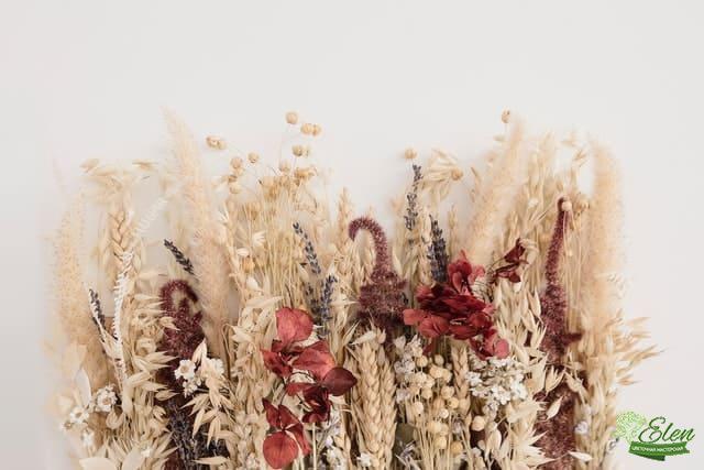 Сухие растения